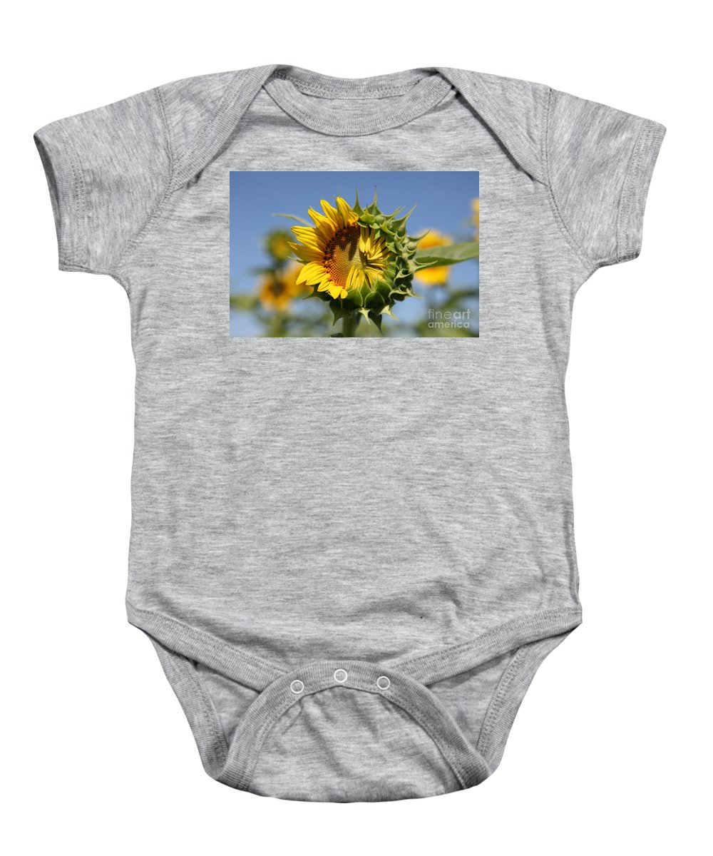 Sunflowers Baby Onesie featuring the photograph Hesitant by Amanda Barcon