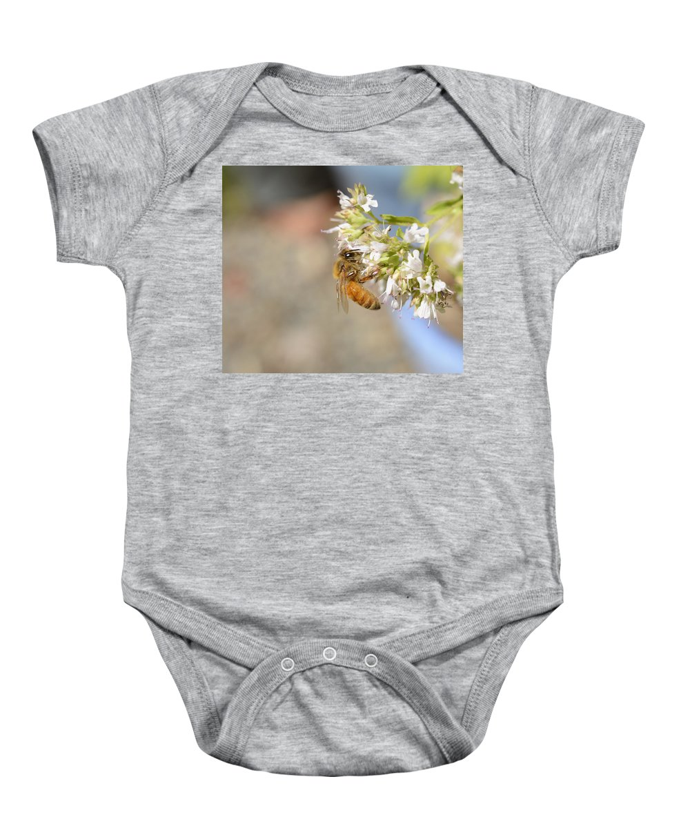 Honey Bee Baby Onesie featuring the photograph Honey Bee On Herb Flowers by Marv Vandehey