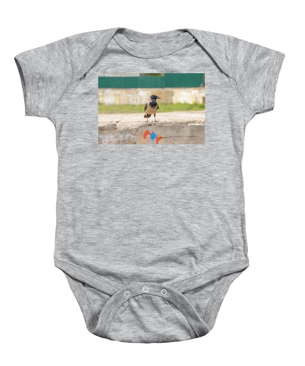 Hooded Crow Baby Onesie featuring the photograph Hooded Crow On A Wall by Alain De Maximy