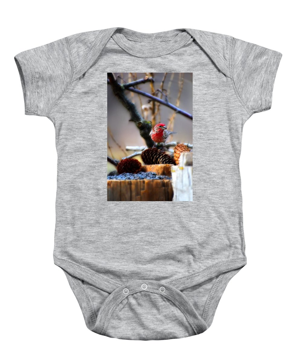 House Finch Baby Onesie featuring the photograph House Finch by Michael Tucker