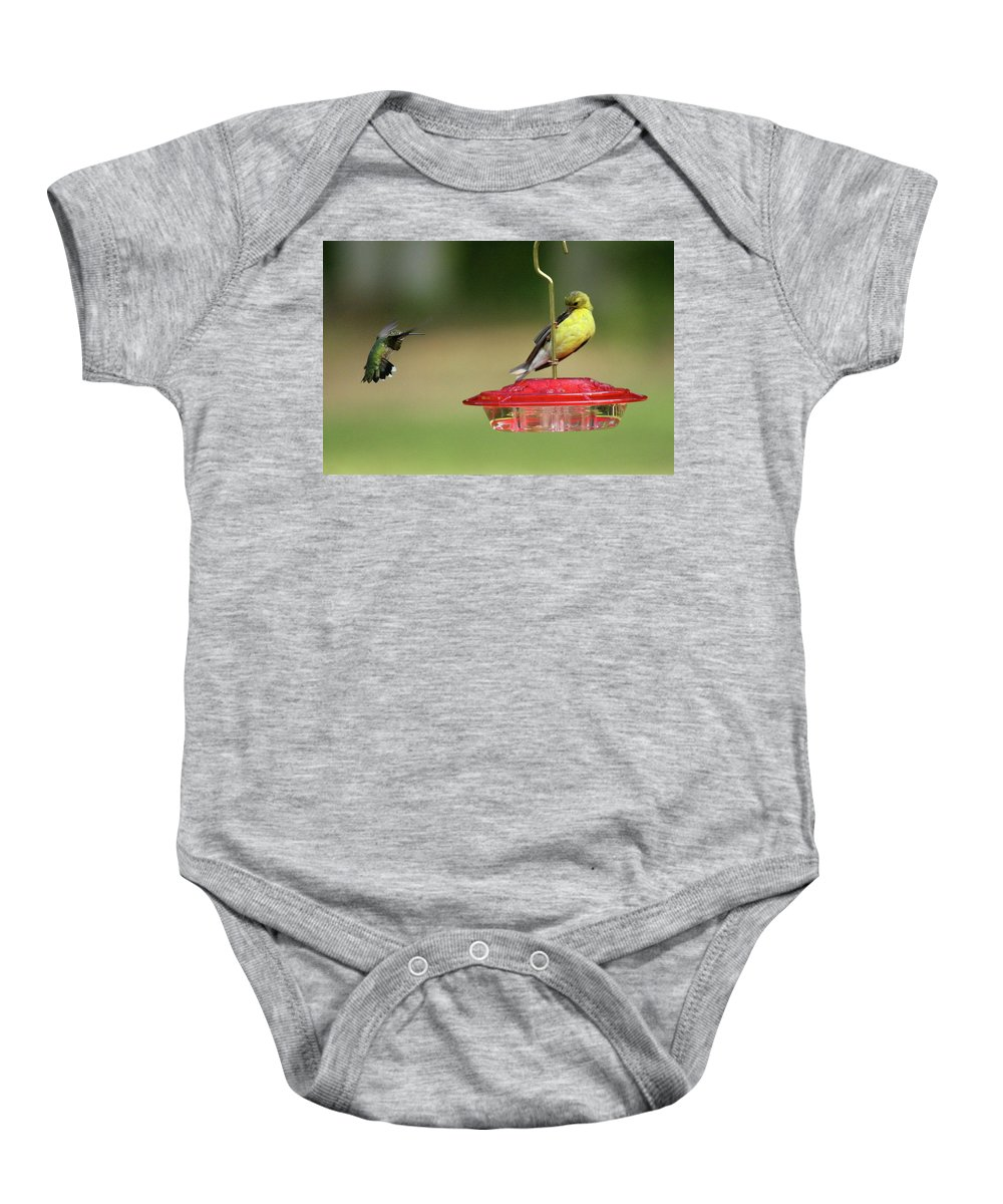 Bird Baby Onesie featuring the photograph Hummer Vs. Finch 1 by Lou Ford