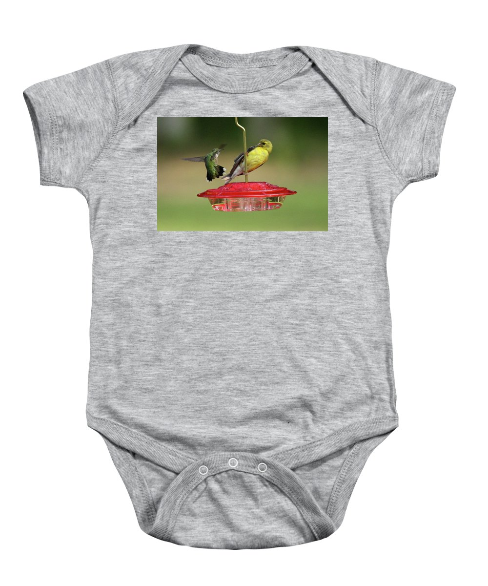 Bird Baby Onesie featuring the photograph Hummer Vs. Finch 2 by Lou Ford