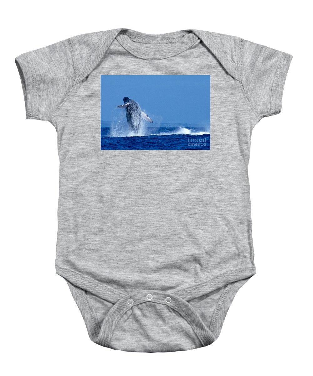 Animal Art Baby Onesie featuring the photograph Humpback Whale Breaching by Ed Robinson - Printscapes