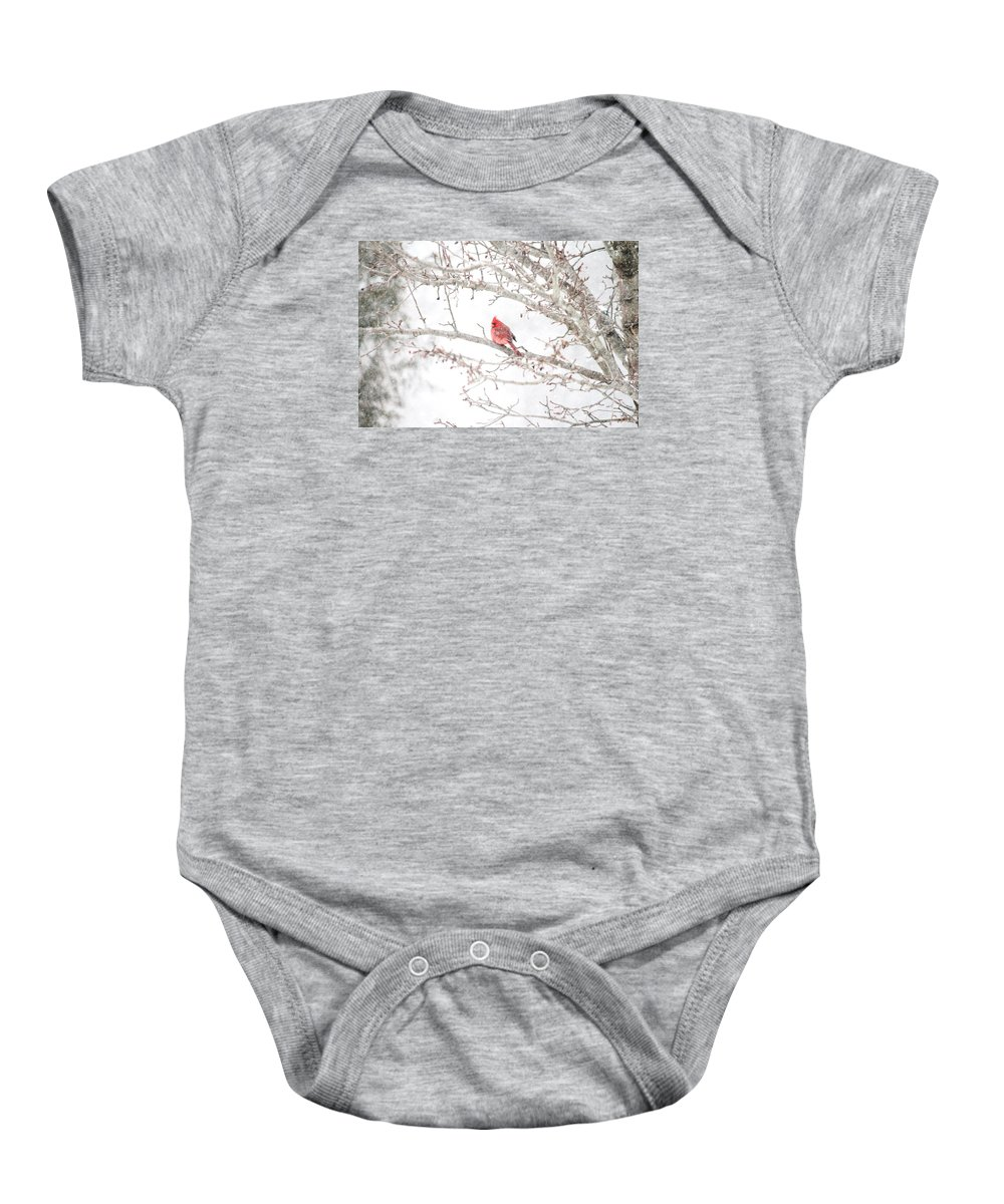 Snow Baby Onesie featuring the photograph I Tend To Attract Attention by Sandra Bennett