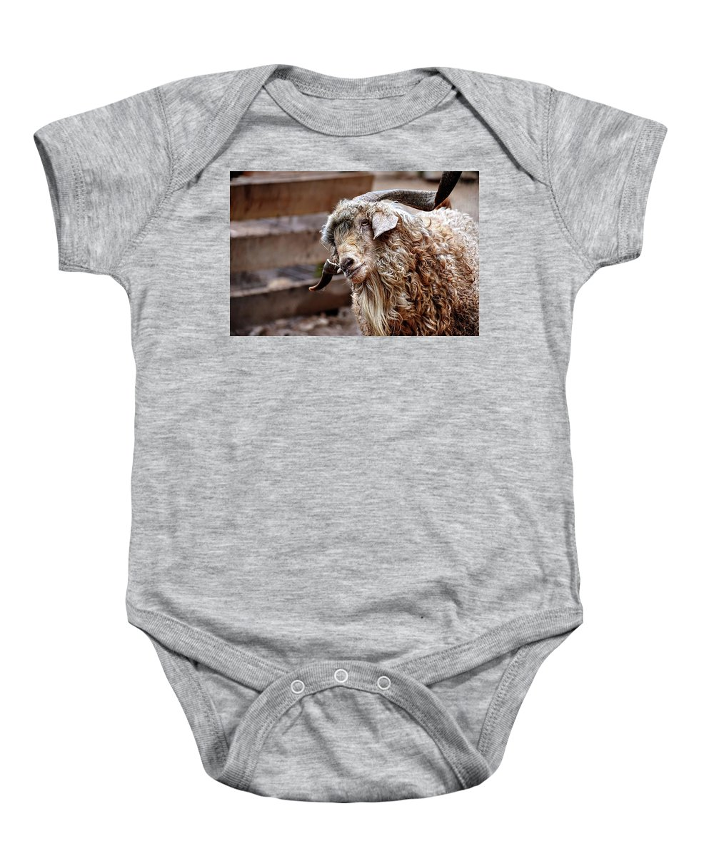 Long Haired Sheep Baby Onesie featuring the photograph I Think I Am Having A Good Hair Day. What Do You Think? by Ronda Ryan