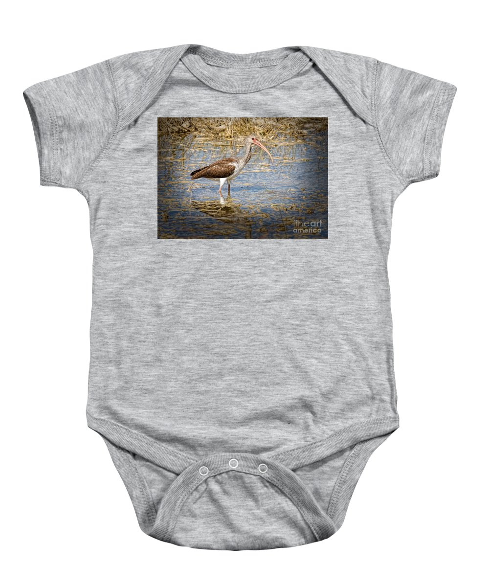 Everglades Baby Onesie featuring the painting Ibis In The Rough by Judy Kay