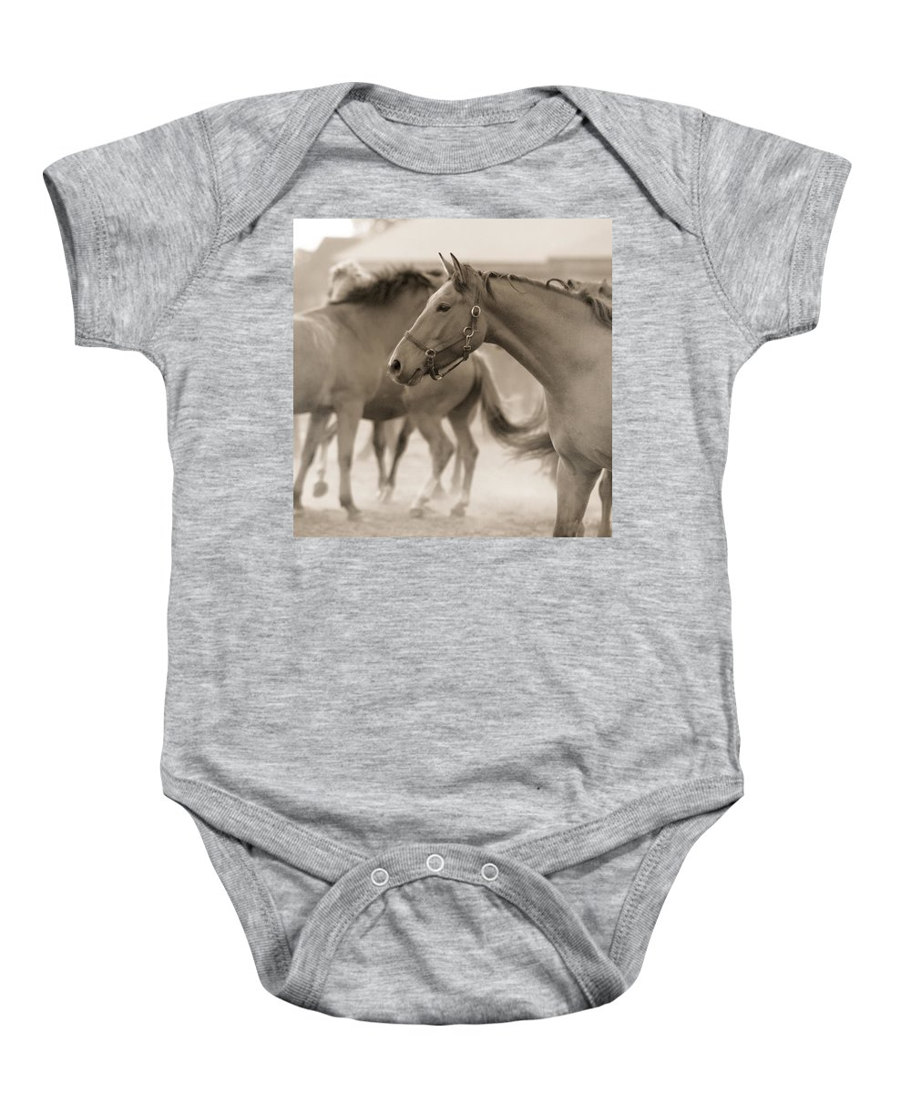 Horses Baby Onesie featuring the photograph In The Dust by Angel Tarantella