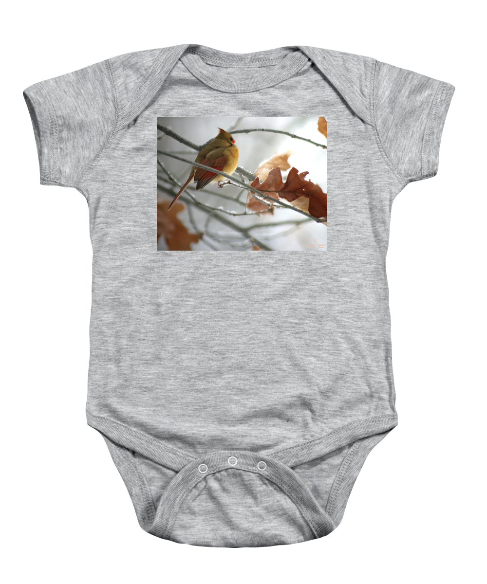 Jenny Gandert Baby Onesie featuring the photograph Into The Light by Jenny Gandert