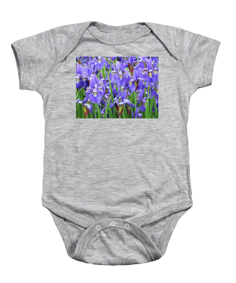 �irises Artwork� Baby Onesie featuring the photograph Iris Flowers Artwork Purple Irises 9 Botanical Garden Floral Art Baslee Troutman by Baslee Troutman
