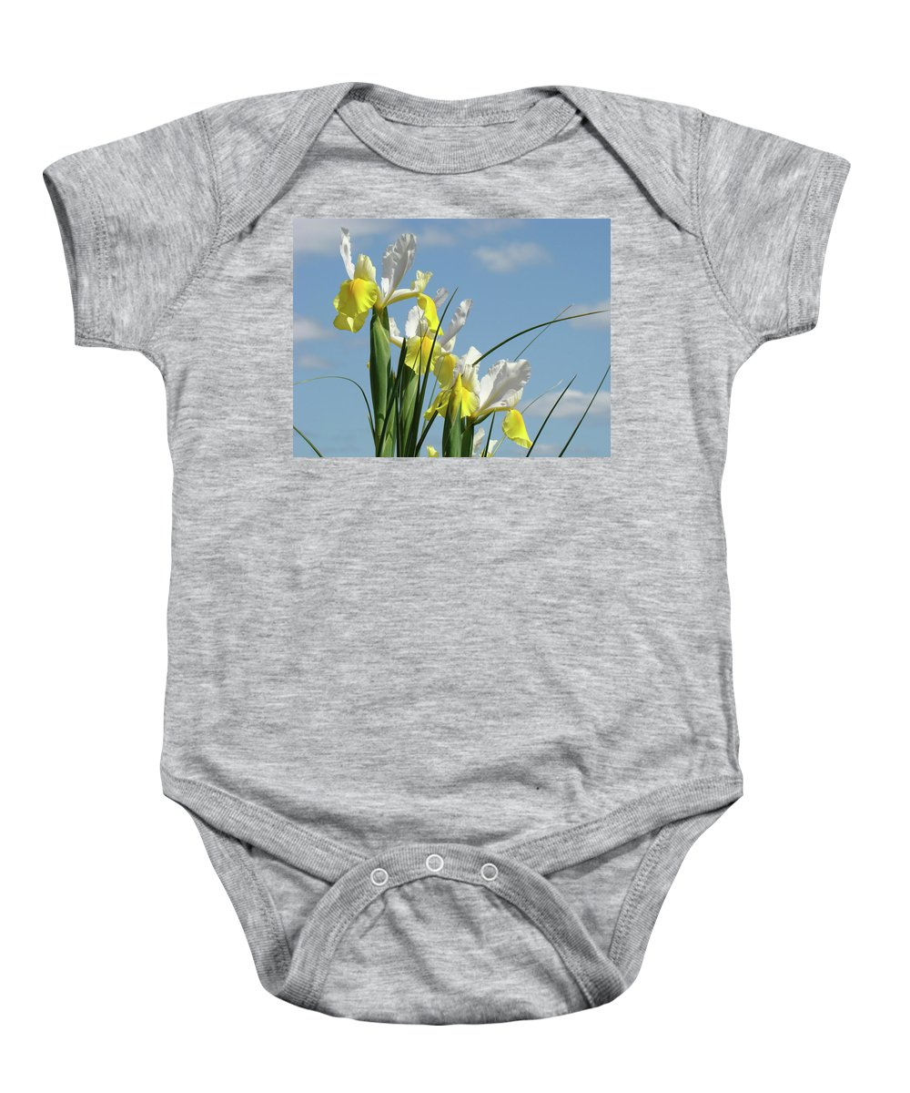Iris Baby Onesie featuring the photograph Irises In Blue Sky Art Print Spring Iris Flowers Baslee Troutman by Baslee Troutman