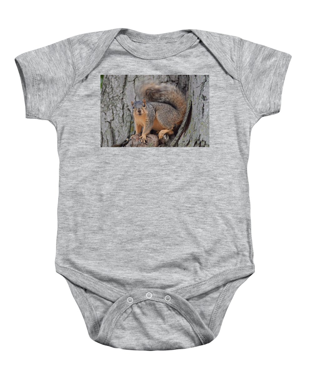 Squirrel Baby Onesie featuring the photograph Irritated Squirrel by Belinda Stucki