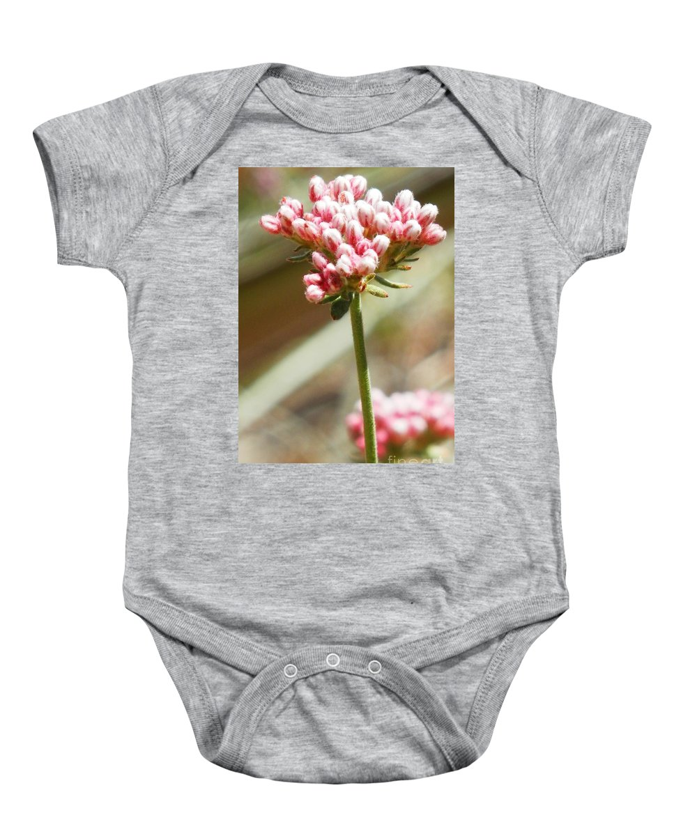 Tiny Flowers Baby Onesie featuring the photograph Itty Bittys by L Cecka