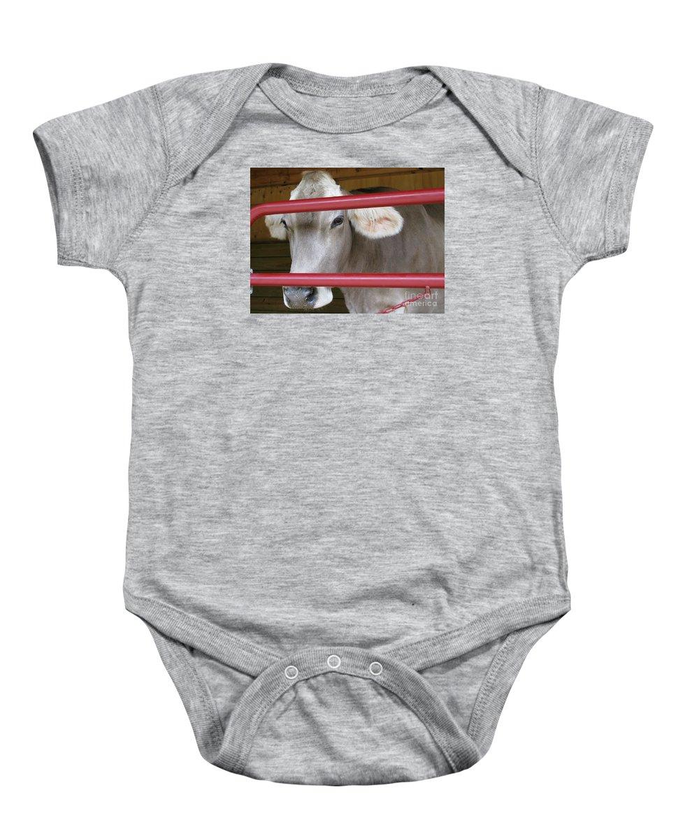 Calf Baby Onesie featuring the photograph Jersey Calf by Ann Horn