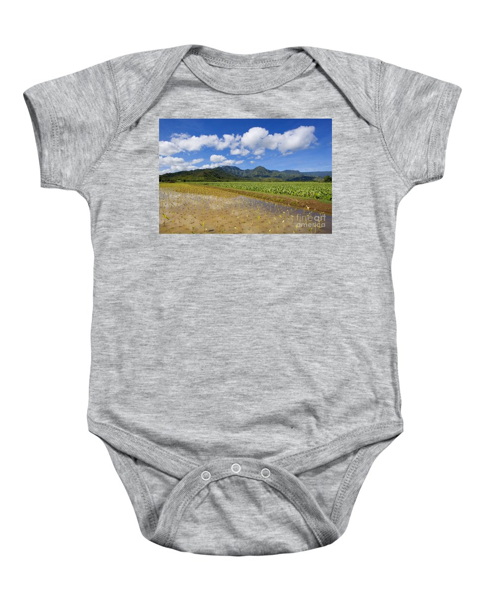 Afternoon Baby Onesie featuring the photograph Kauai Wet Taro Farm by Ron Dahlquist - Printscapes