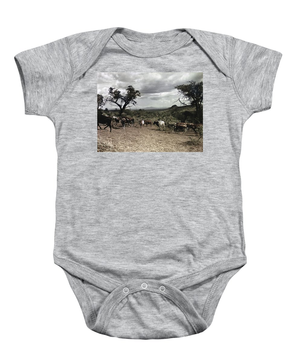 1936 Baby Onesie featuring the photograph Kenya: Cattle, 1936 by Granger