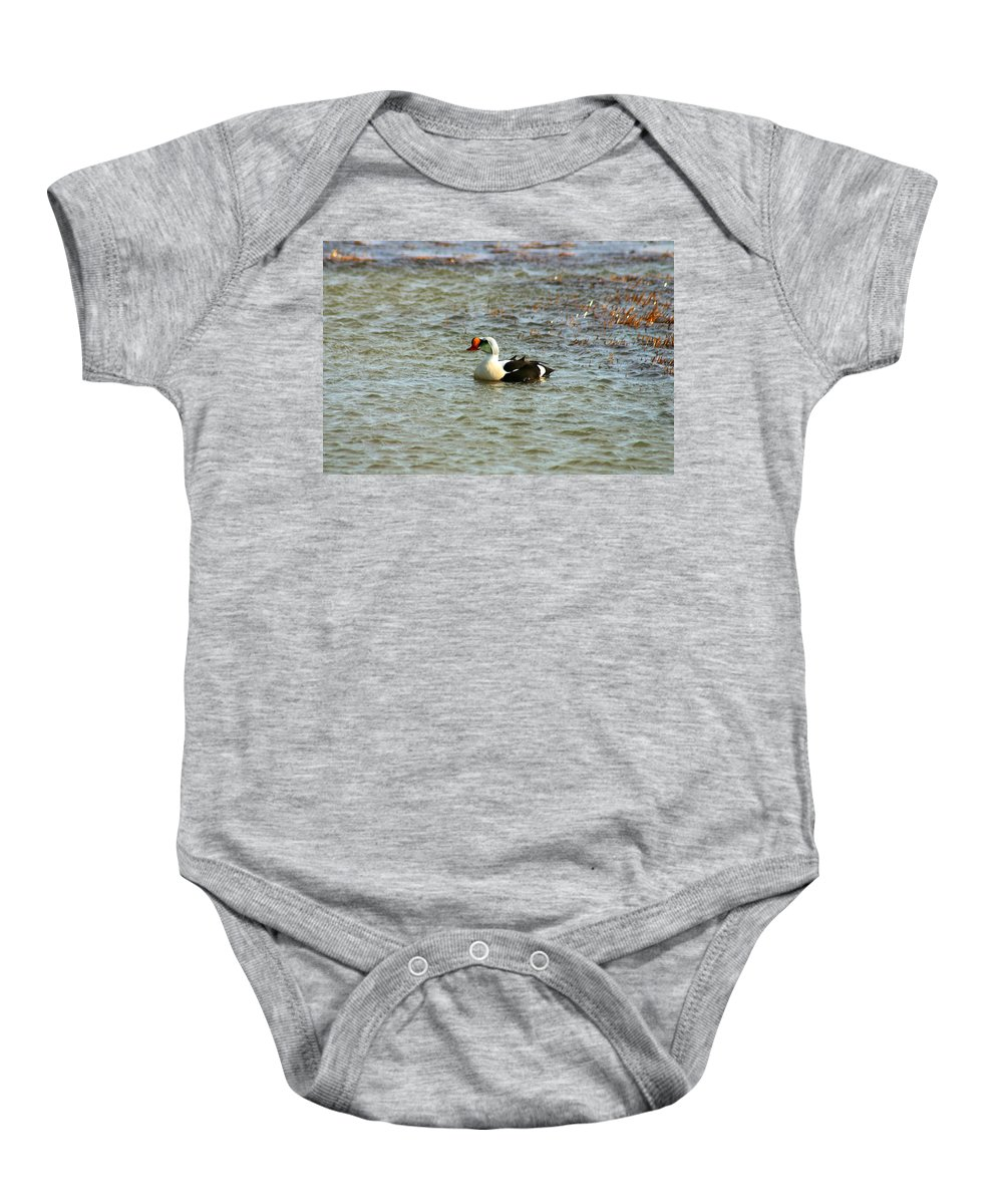King Eider Baby Onesie featuring the photograph King Eider by Anthony Jones