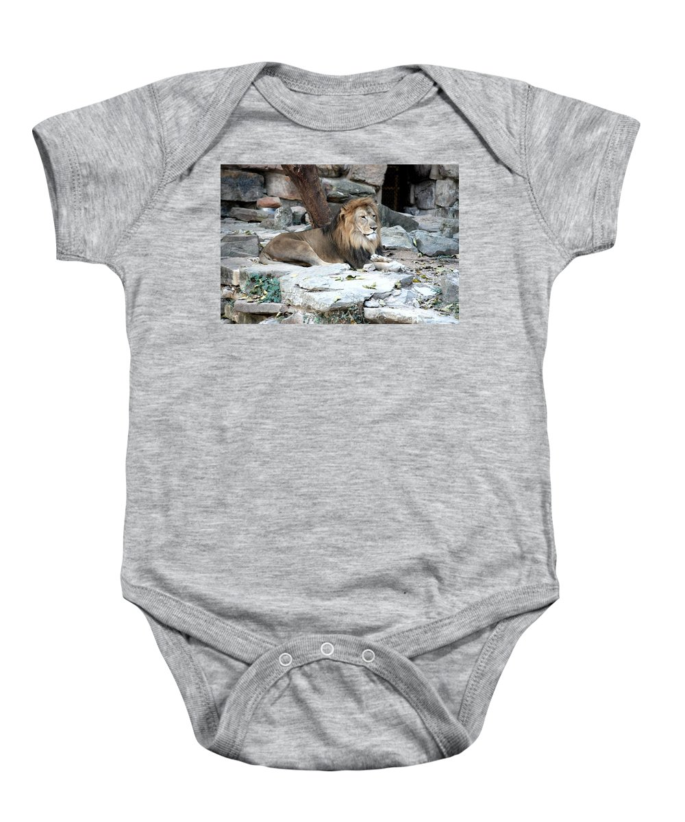 Ft. Worth Zoo Baby Onesie featuring the photograph King Of The Jungle by Kenny Glover