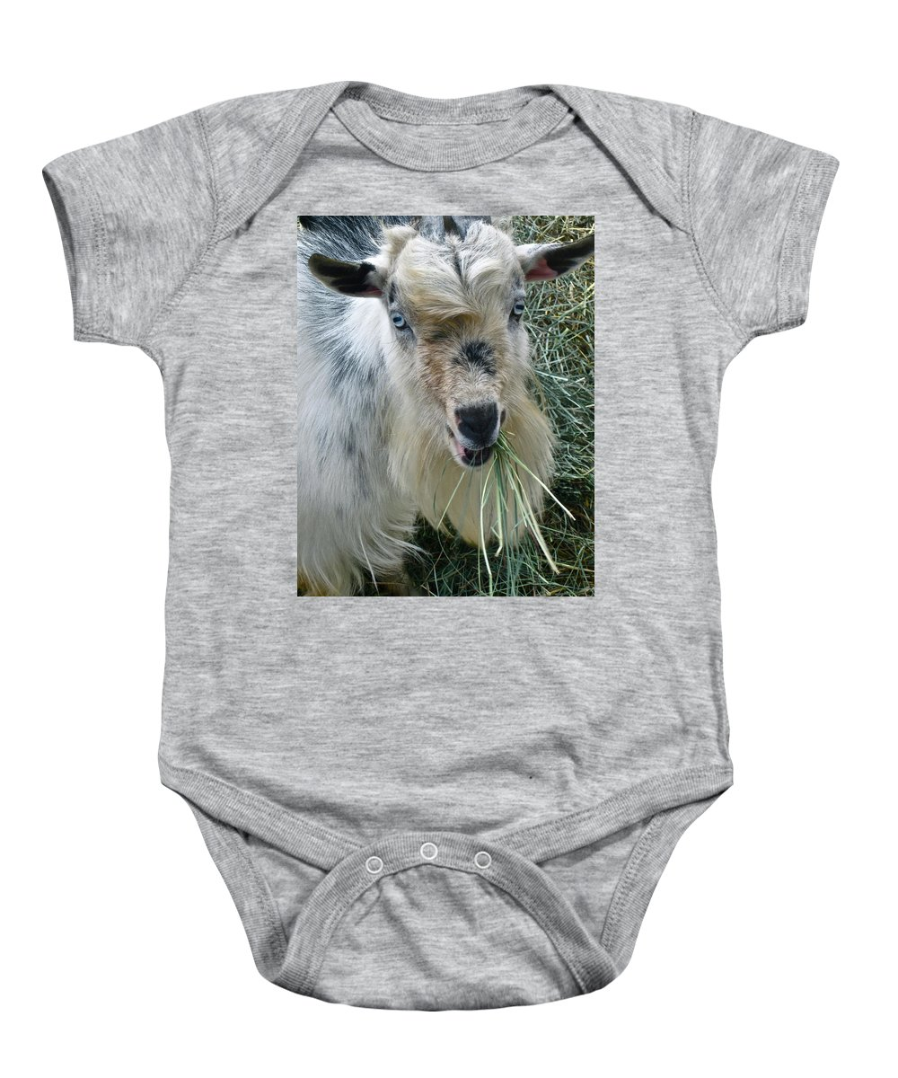 Goat Photograph Baby Onesie featuring the photograph King Of The Road by Gwyn Newcombe