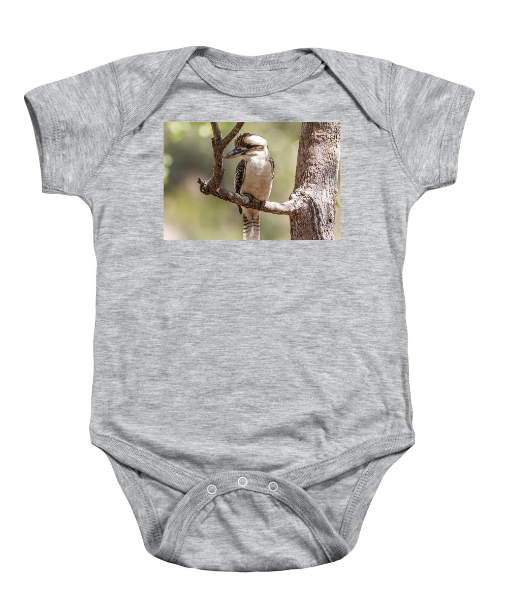 Kookaburra Baby Onesie featuring the photograph Kookaburra Sits In The Ol Gum Tree by Suzanne Vreeland