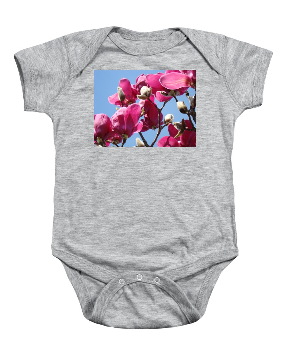 Magnolia Baby Onesie featuring the photograph Landscape Pink Magnolia Flowers 46 Blue Sky Magnolia Tree by Baslee Troutman
