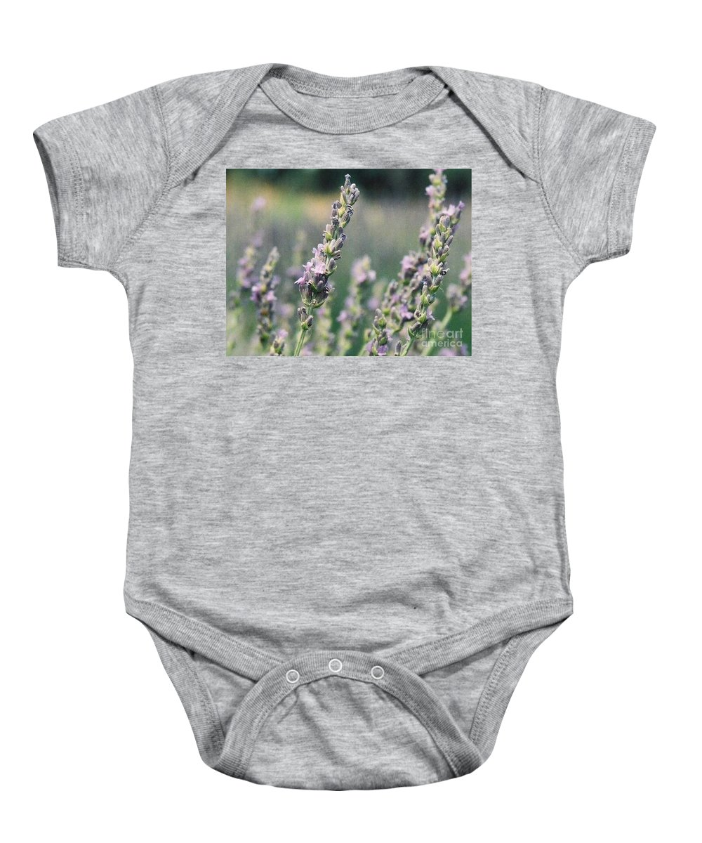 Flowers Baby Onesie featuring the painting Lavender by Eric Schiabor
