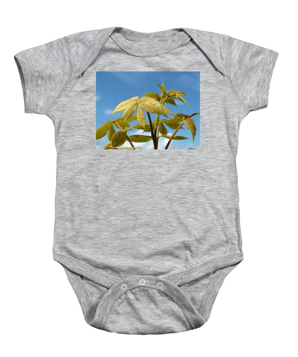 Nature Baby Onesie featuring the photograph Leaves Of Gold by Peg Urban