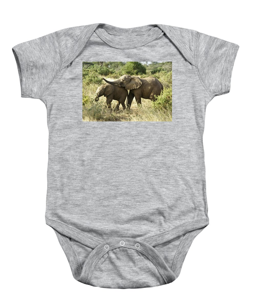 Africa Baby Onesie featuring the photograph Let's Play by Michele Burgess