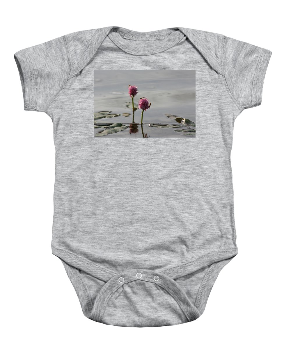 Wasp Lilypads Water Lake Plants Nature Wild Bugs Pink Flower Baby Onesie featuring the photograph Lilypads And Wasps by Andrea Lawrence