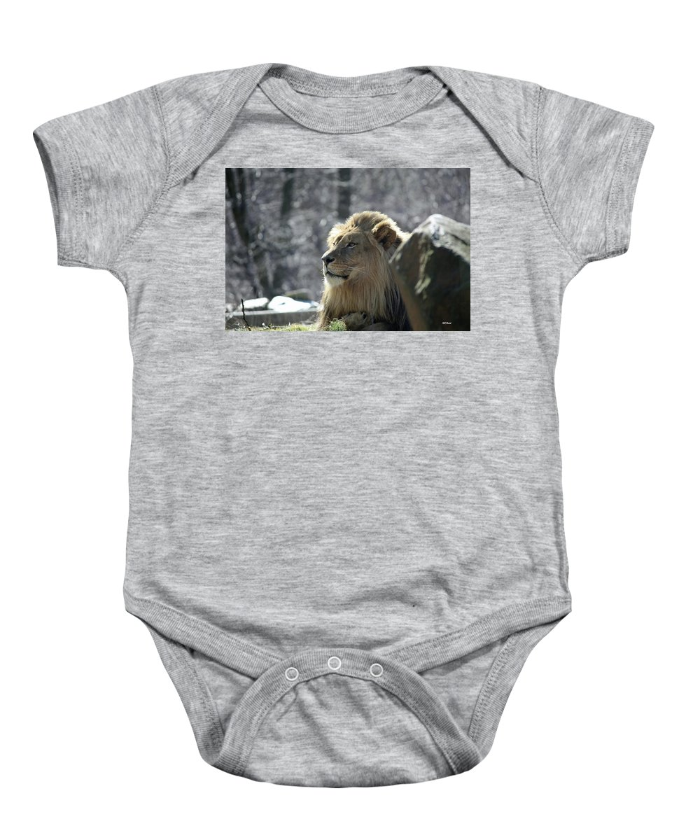 Maryland Baby Onesie featuring the photograph Lion King by Ronald Reid