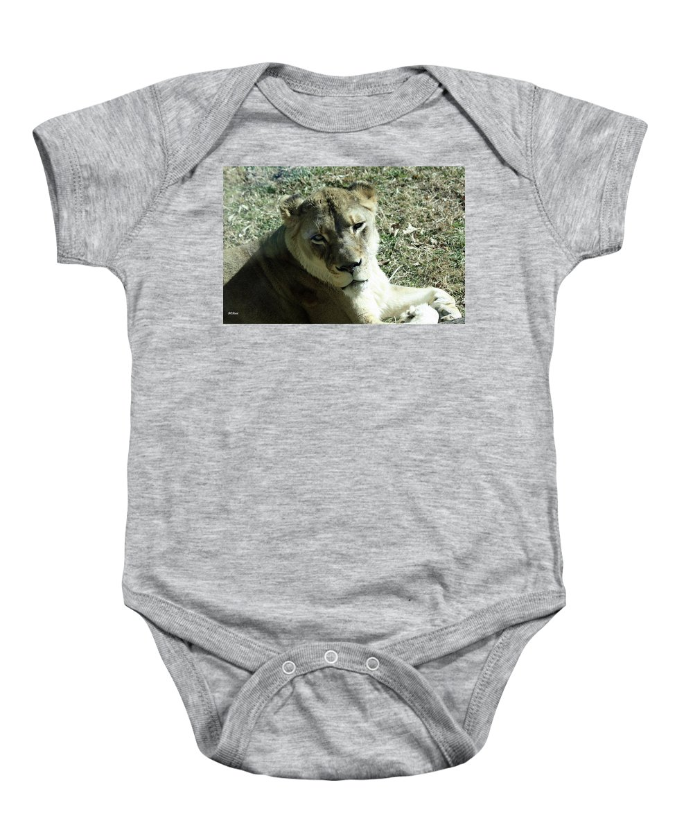 Maryland Baby Onesie featuring the photograph Lioness Peering by Ronald Reid