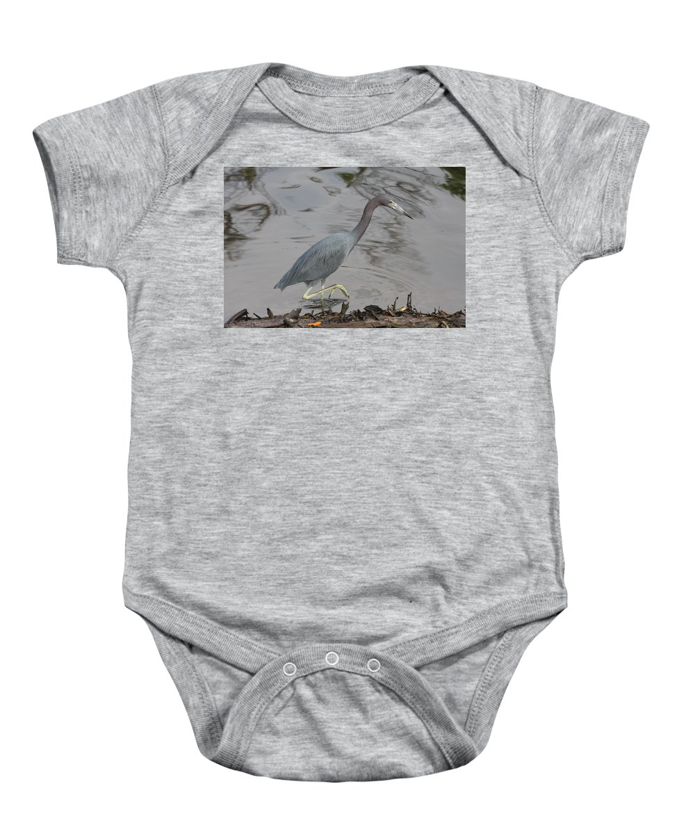 Heron Baby Onesie featuring the photograph Little Blue Heron Walking by Christiane Schulze Art And Photography