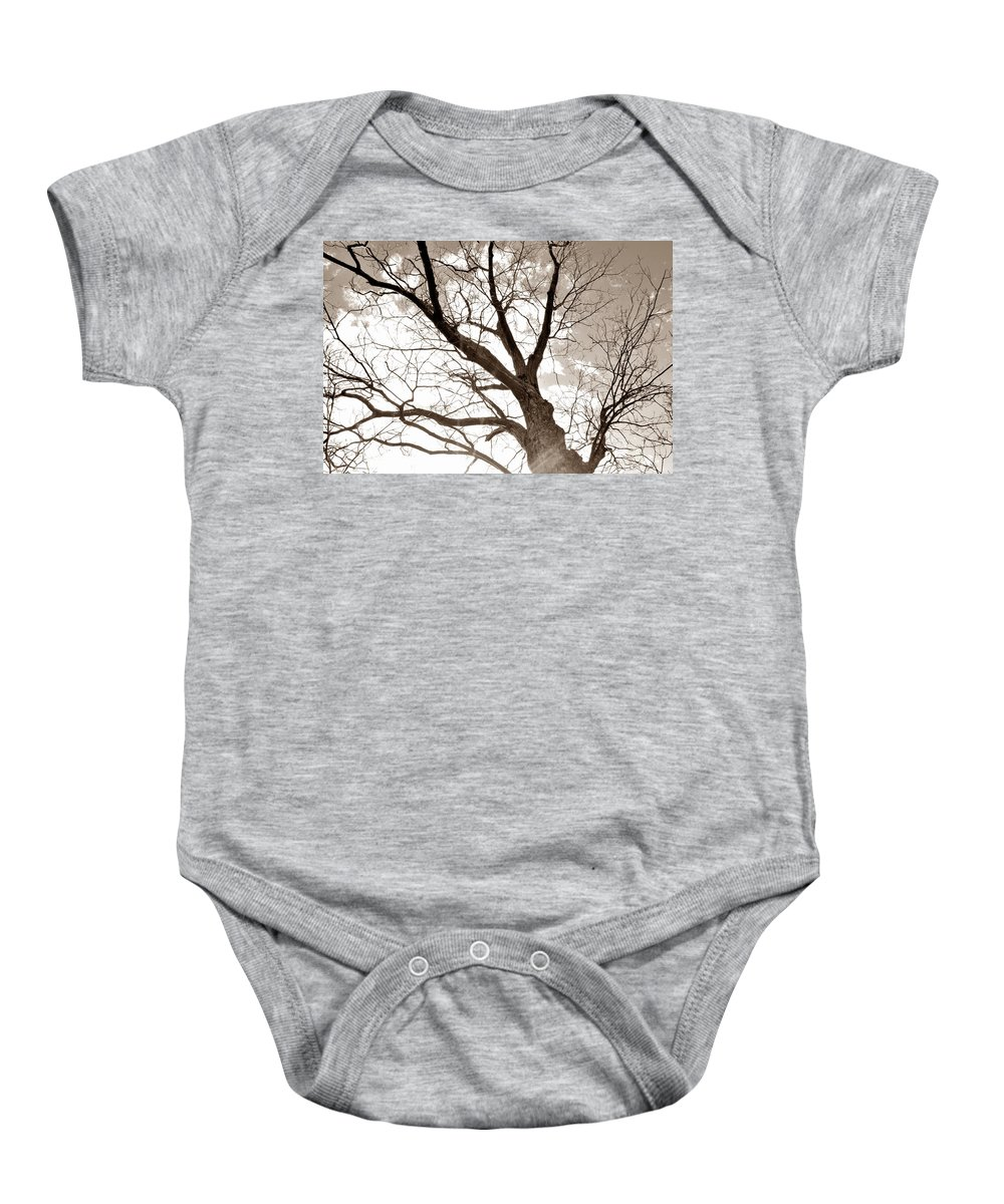 Tree Baby Onesie featuring the photograph Looking Up In Sepia by Jennifer Wick