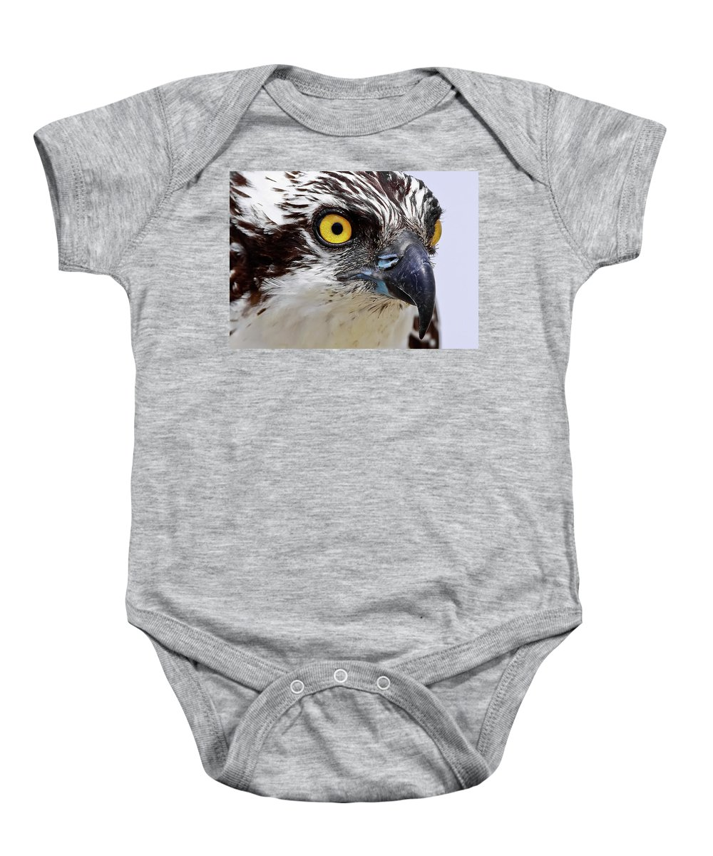 Osprey Baby Onesie featuring the photograph Looks That Kill by Dennis Goodman