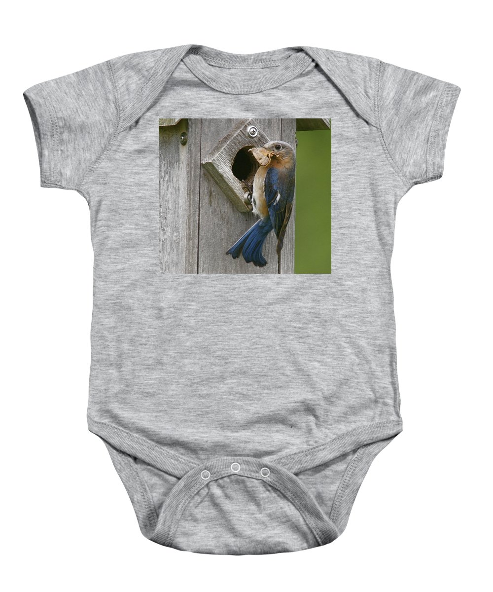 Bird Baby Onesie featuring the photograph Lunch Time by Robert Pearson