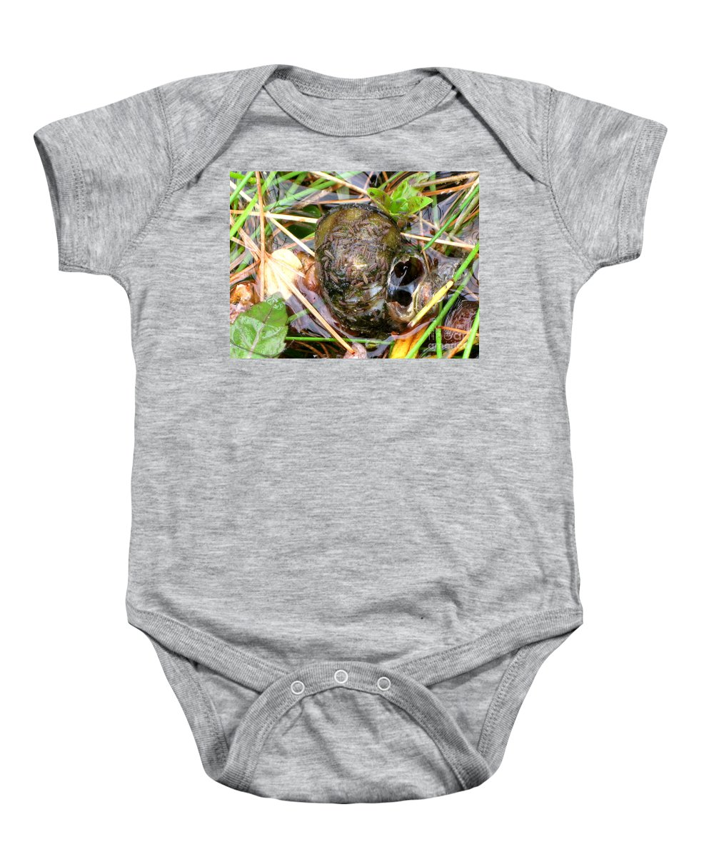 Maggots Baby Onesie featuring the photograph Maggots Recyling by Kim Peto