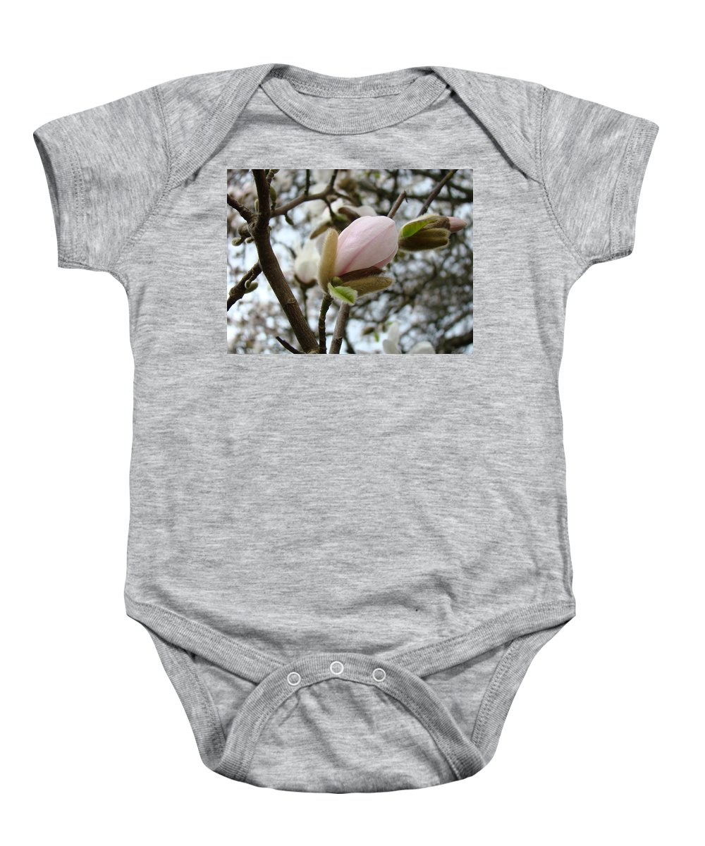 Magnolia Baby Onesie featuring the photograph Magnolia Flower Pink White 19 Magnolia Tree Spring Art by Baslee Troutman