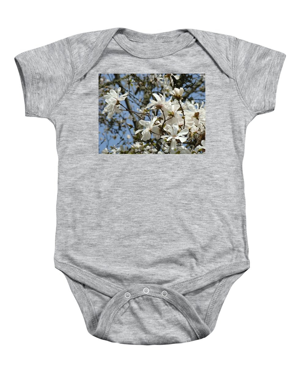Magnolia Baby Onesie featuring the photograph Magnolia Flowers White Magnolia Tree Flowers Art Prints by Baslee Troutman