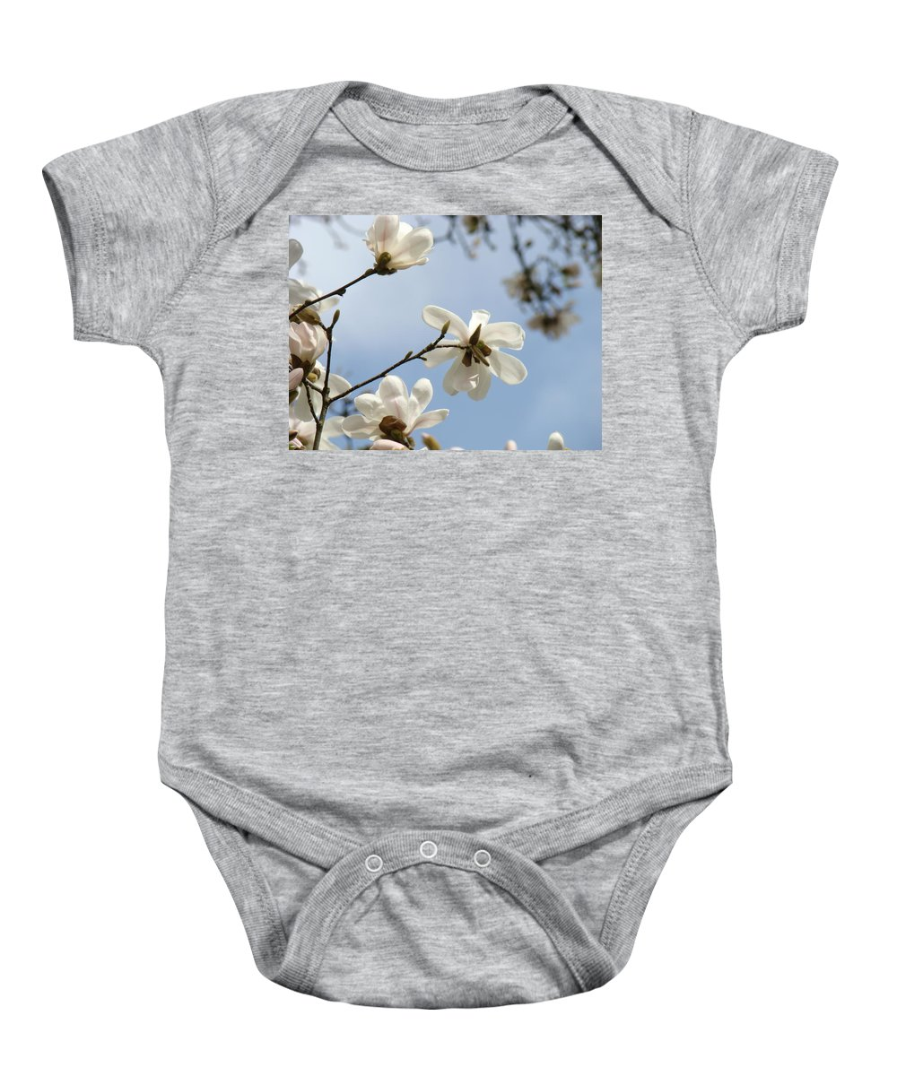 Magnolia Baby Onesie featuring the photograph Magnolia Flowers White Magnolia Tree Spring Flowers Artwork Blue Sky by Baslee Troutman