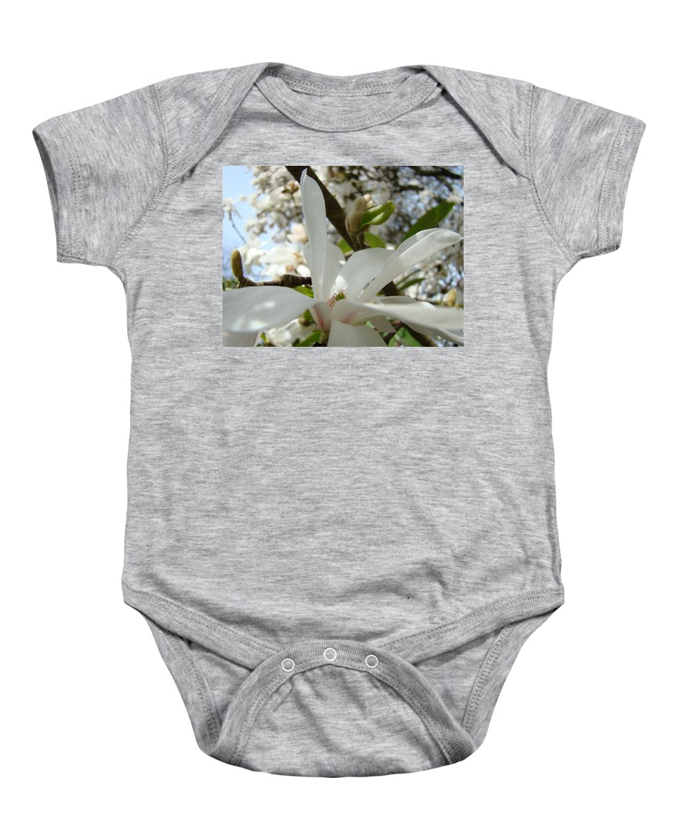 Magnolia Baby Onesie featuring the photograph Magnolia Tree Flowers Art Prints White Magnolia Flower by Baslee Troutman