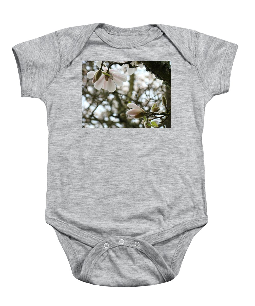 Magnolia Baby Onesie featuring the photograph Magnolia Tree Flowers Pink White Magnolia Flowers Spring Artwork by Baslee Troutman