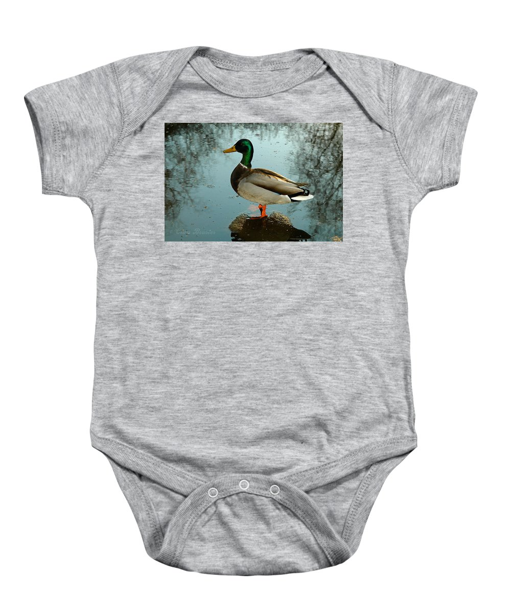 Clay Baby Onesie featuring the photograph Mallard by Clayton Bruster