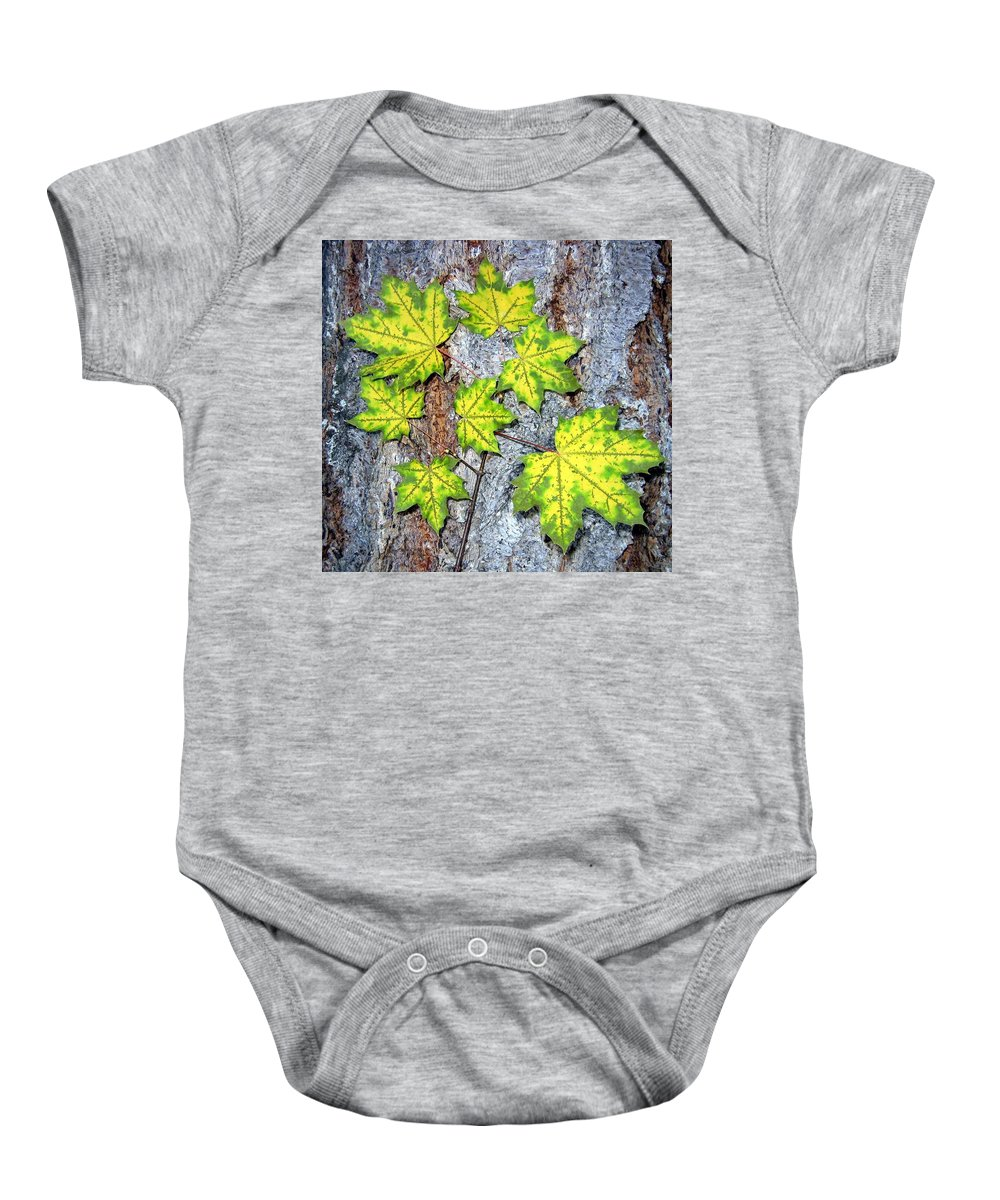 Autumn Baby Onesie featuring the photograph Maple Mania 12 by Will Borden