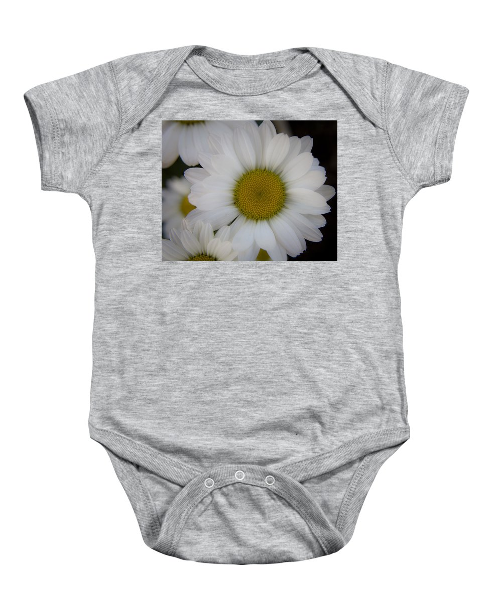 Marguerite Baby Onesie featuring the photograph Marguerite Daisies by Teresa Mucha