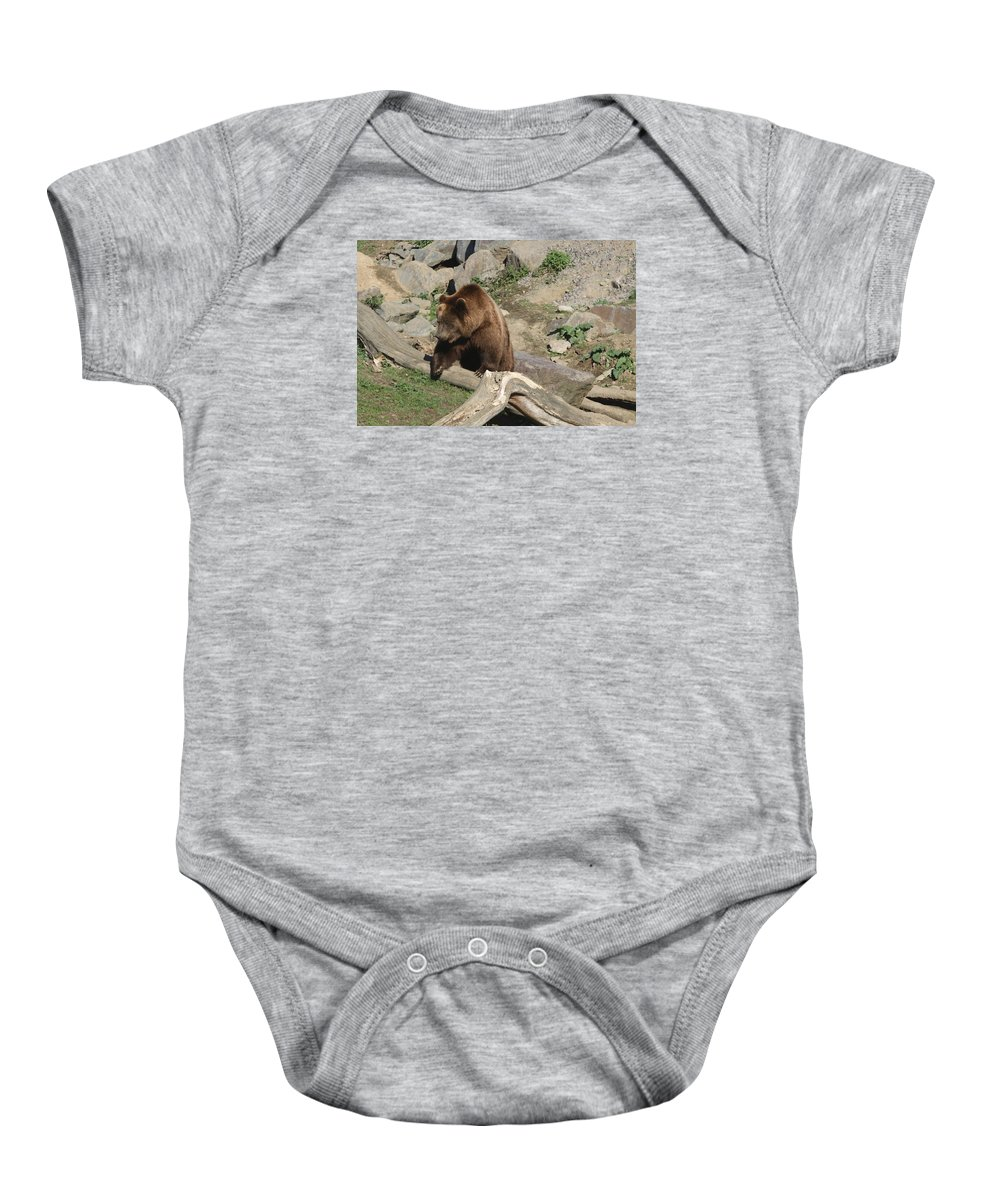 Bear Baby Onesie featuring the photograph Master Bruin by Christiane Schulze Art And Photography