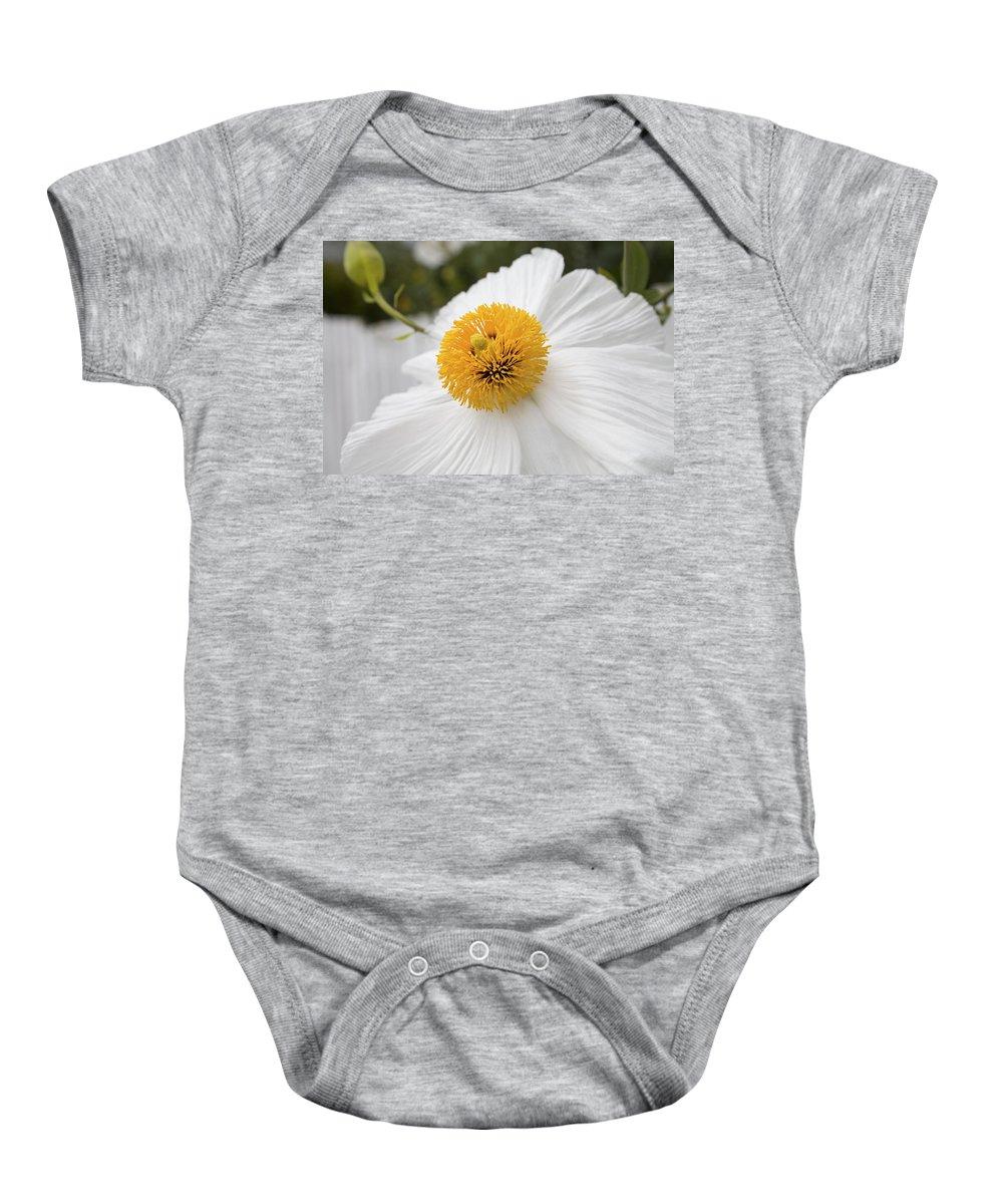 White Baby Onesie featuring the photograph Matillija Poppy by Diane Macdonald