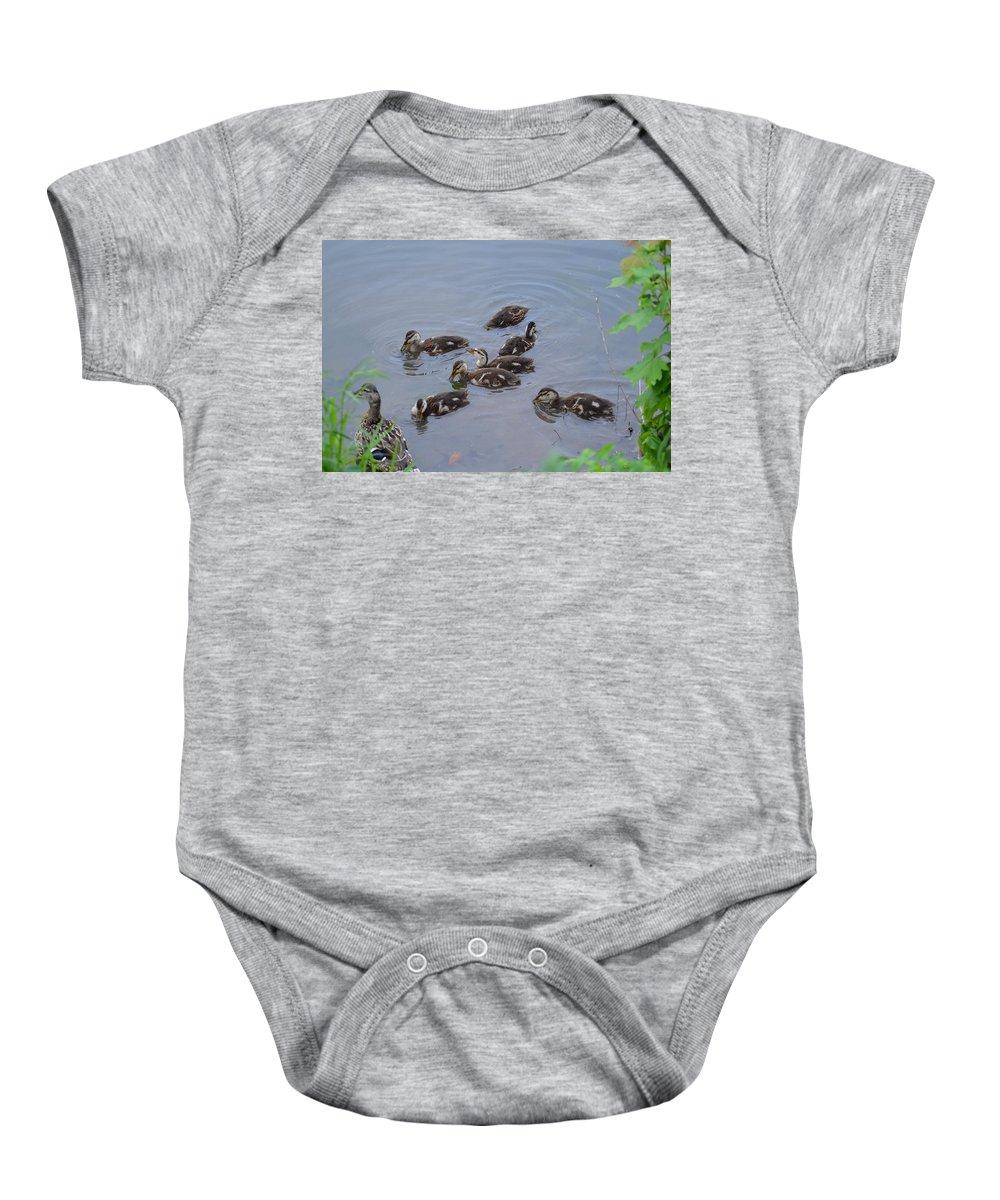 Duck Baby Onesie featuring the photograph Maturing Ducklings by Belinda Stucki