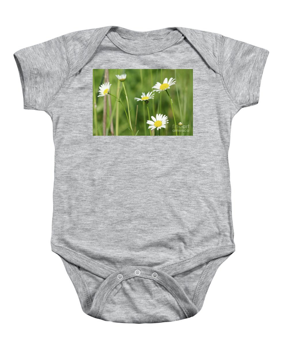 Camomile Baby Onesie featuring the photograph Meadow Detail White Wild Flowers by Goce Risteski