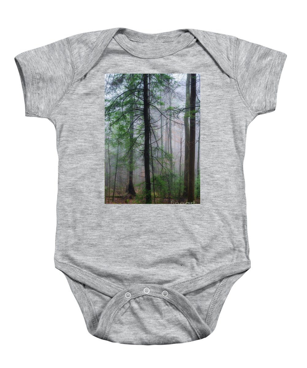 Fog Baby Onesie featuring the photograph Misty Winter Forest by Thomas R Fletcher