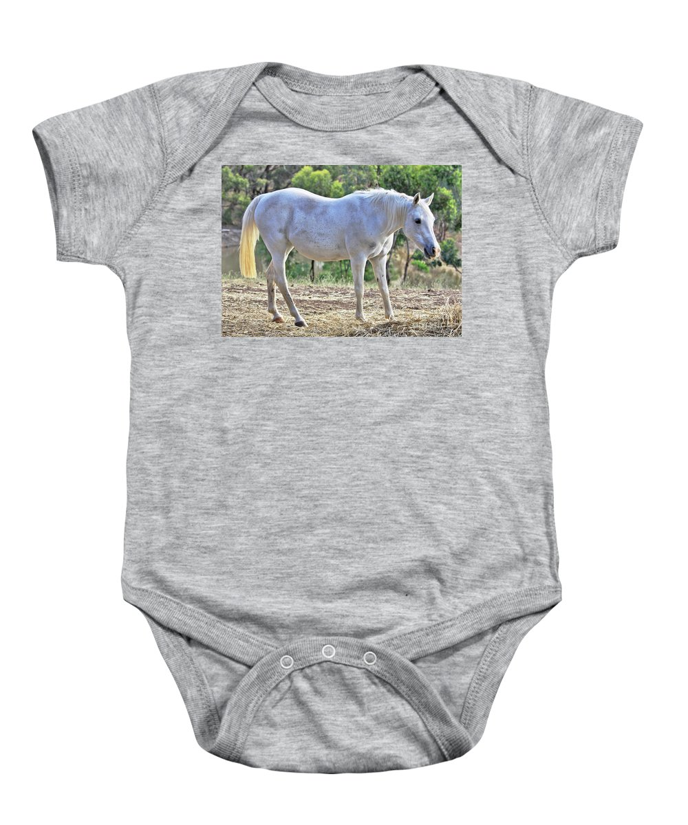 Horse Baby Onesie featuring the photograph Mitzy by Stephen Mitchell