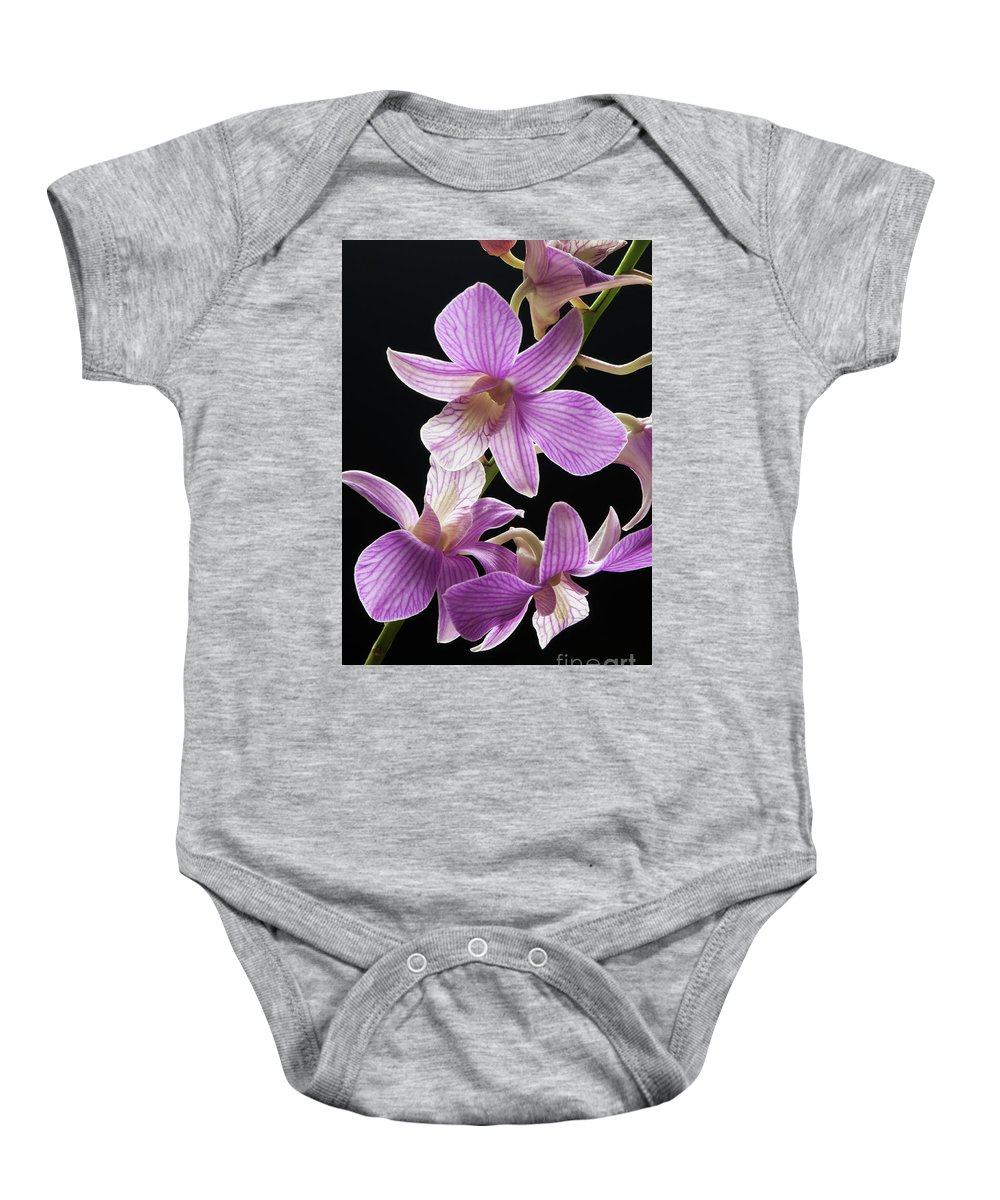 2011 Baby Onesie featuring the photograph Mokara Orchid - 6727 by David R Mann